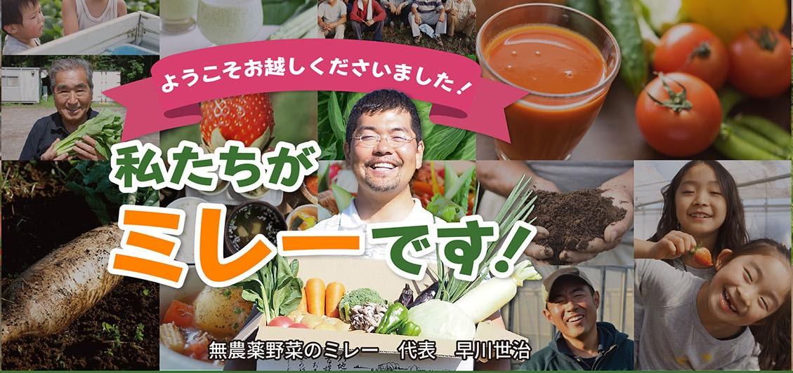 無農薬野菜ミレー